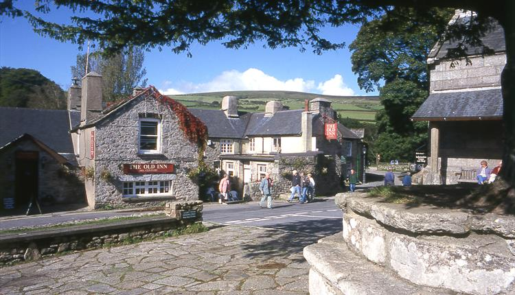 Things to do on Dartmoor - events