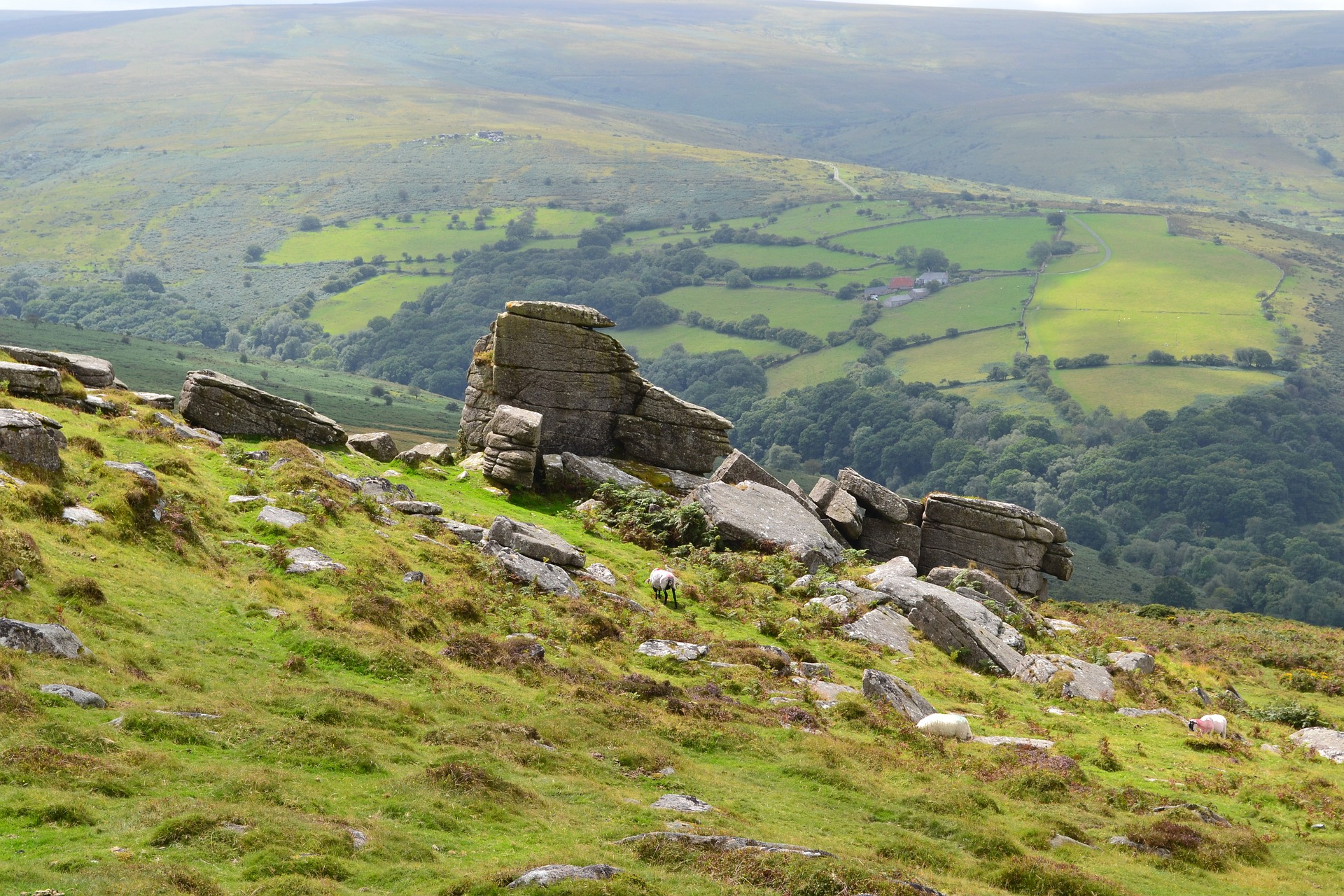 Things to do on Dartmoor